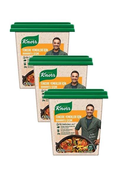 Tencere Yemekleri İçin Baharatlı Çeşni 135 G x 3