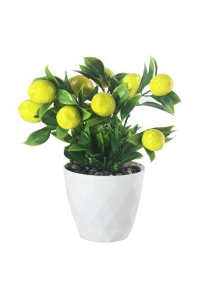 Yapay Çiçek Limon Ağacı Beyaz Saksıda Ve Dekoratif 20-10 cm