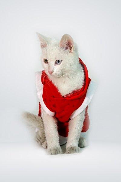 Lazer Eskitme Detaylı Special Kumaş Kırmızı Kapüşonlu Kedi Kıyafet