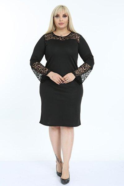 Kadın Büyük Beden Şifon Yaka Ispanyol Kol Elbise