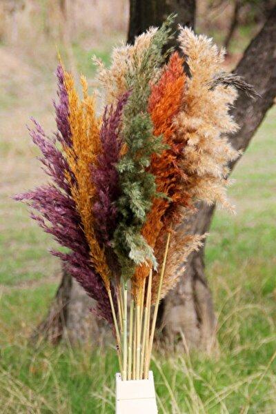 Kuru Çiçek Pampas 15 Adet 100 Cm Boy - Karışık