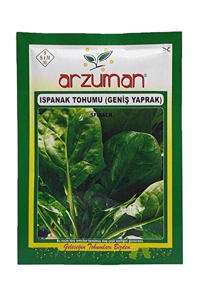 Geniş Yapraklı Ispanak Tohumu 25 gr