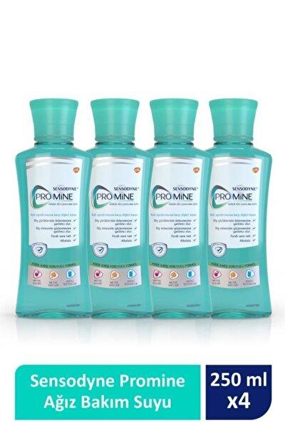 Promine Ağız Bakım Suyu 250ml X 4'lü Paket