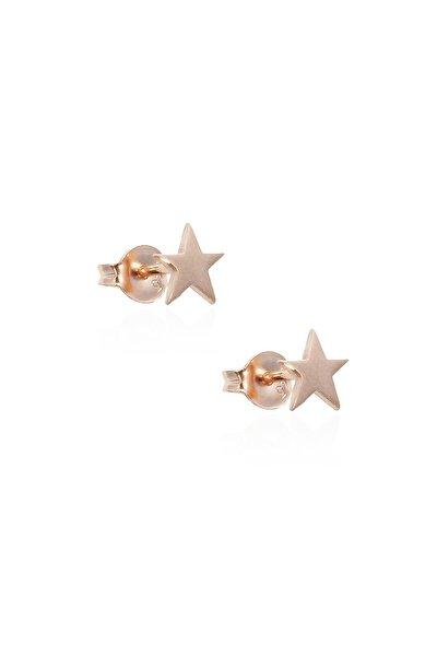 Mini Yıldız Küpe - Rose