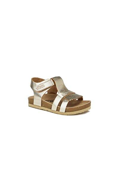 Venüs Deri Sandalet Altın