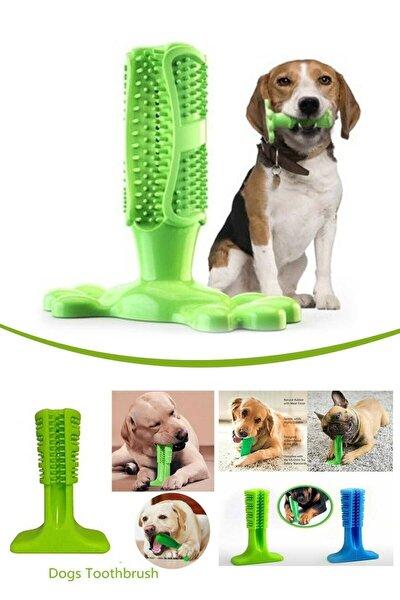 Köpek Diş Temizleyici Oyuncak Küçük Boy M Diş Fırçası