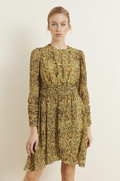 Kadın Yeşil Beli Piliseli Şifon Elbise