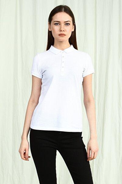Beyaz Polo Yaka Kısa Kollu Basic Kadın Tshirt