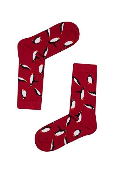 Women Fun Socks Uzun Çorap Multıcolor