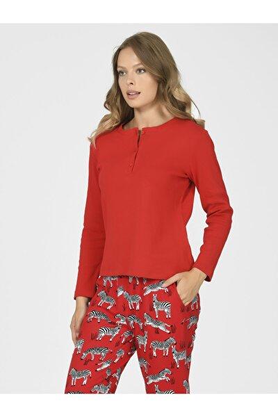 Zebralı Kadın Pijama Takımı 67035