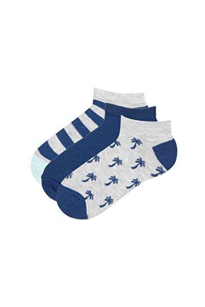 Çok Renkli Erkek Çocuk Palms 3lü Patik Çorap