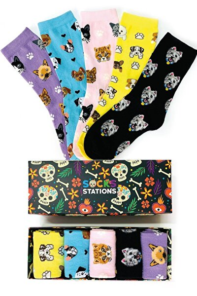 Unisex 5'li Puppy Renkli Desenli Çorap Kutusu