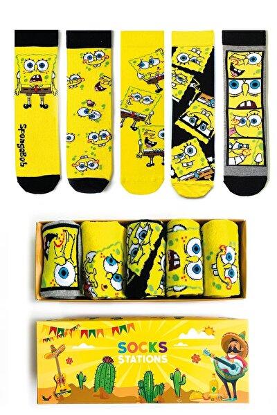 5'li Çizgi Film Desenli Renkli Çorap Kutusu