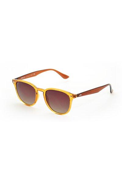 Langdon Daisy Unisex Güneş Gözlüğü