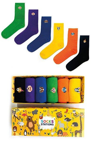 6'lı Köpek Nakışlı Renkli Çorap Kutusu