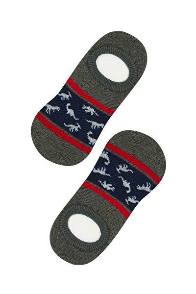 Erkek Çocuk Kül Rengi Dıno Babet Çorap