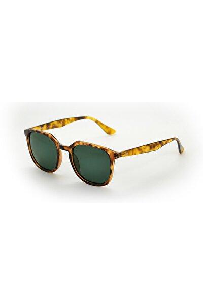 Coffey Amber Unisex Güneş Gözlüğü