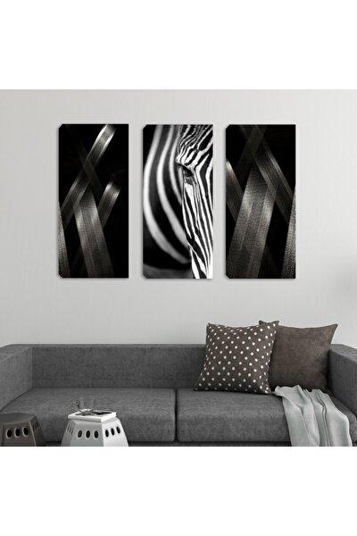 3 Lü Set Kanvas Tablolar 30x70 Cm