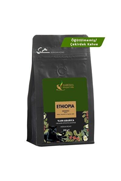Sidamo (gr4) Organik Etiyopya Yöresel Kahvesi 250 Gram Öğütülmemiş/çekirdek Kahve