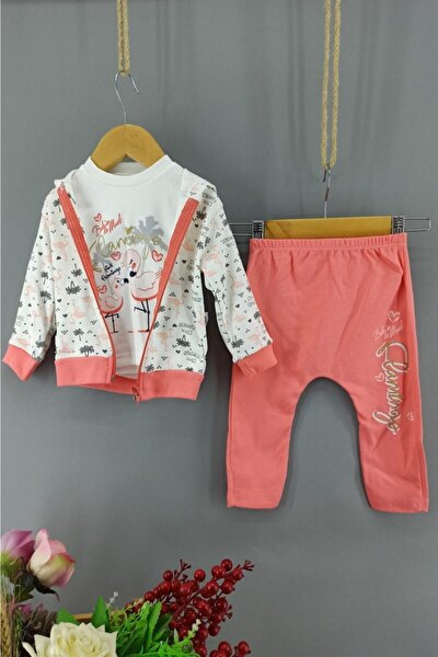 Pembe Flamingo Desenli 3 Lü Bebek Takımı 6-9-12 Ay