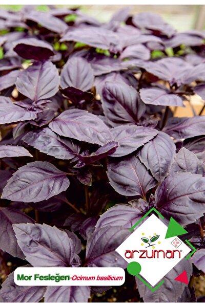 Mor Fesleğen - Mor Reyhan (ocimum Basilicum) Çiçek Tohumu 100 Adet