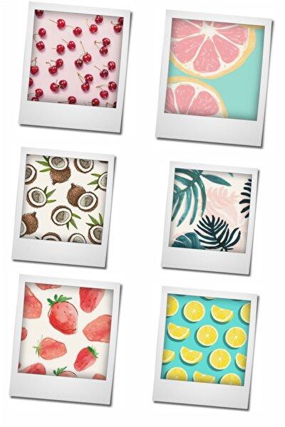 Magnet Buzdolabı Magneti 6'lı Meyve Serisi