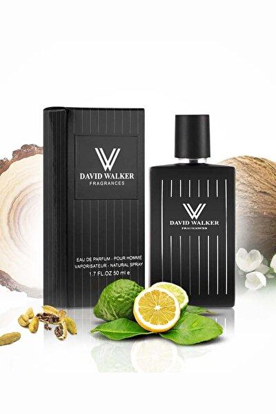 Meyve Erkek Parfüm Walles E88 100ml