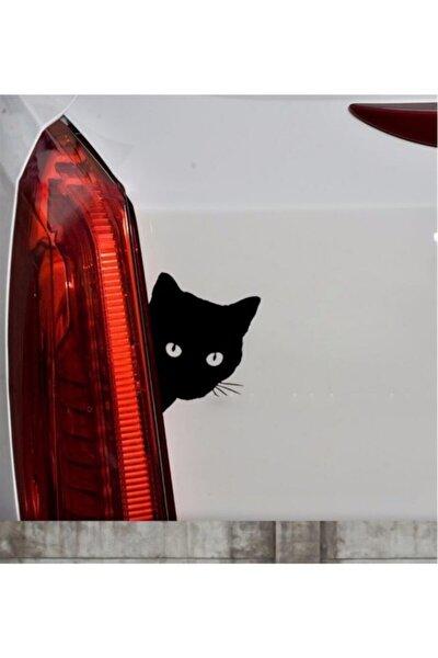 Sevimli Kedi Z Araba Sticker  Yapıştırma