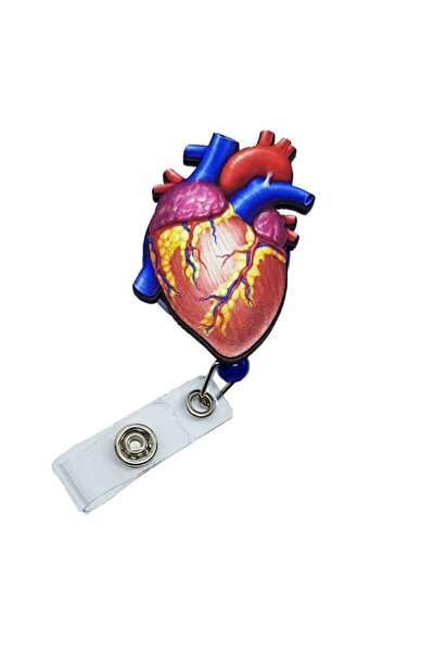 Anatomik Kalp Yoyo Kartlık