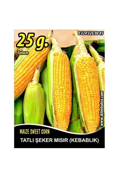 Tatlı Mısır Tohumu Kompozit Tatlı Şeker Pk 25g (~ Takribi 70 Tohum)