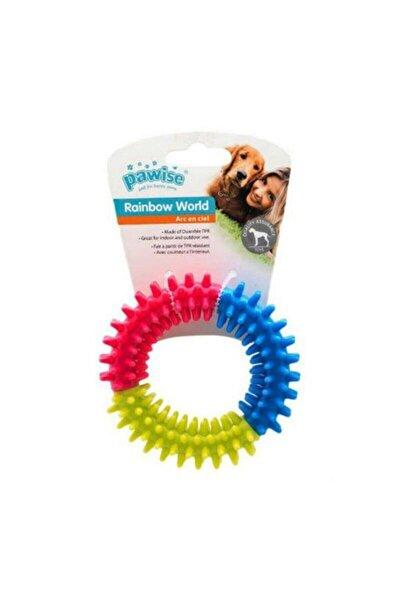 Rainbow Köpekler İçin Diş Kaşıma Oyuncağı Small