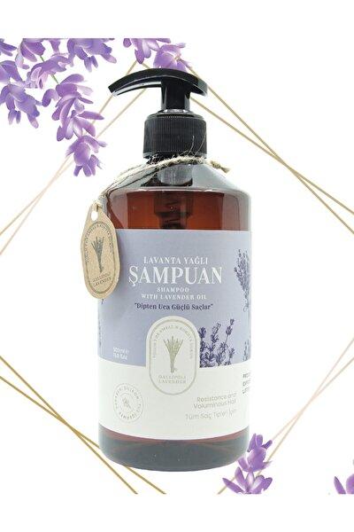 Lavanta Yağlı Şampuan 500 Ml Saç Dökülmeleri Ve Saç Kırılmalarına Karşı Etkili Lavanta Şampuan
