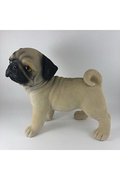 Köpek Pug Biblo
