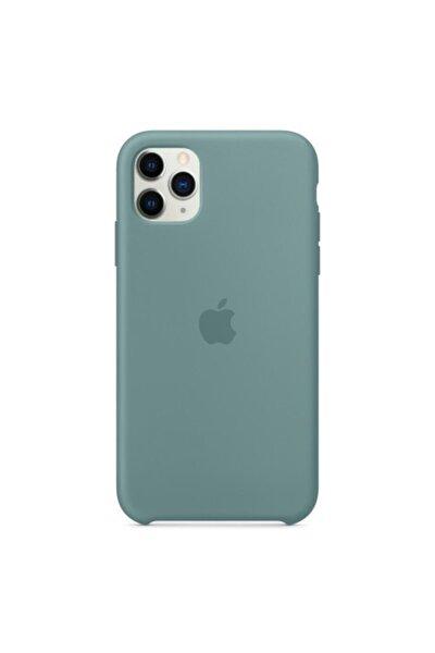 Kaktüs Iphone 11 Pro Uyumlu Lansman Kılıf İçi Kadife
