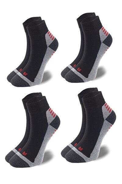 Spor Ayakkabı Kısa Çorap 4 Çift