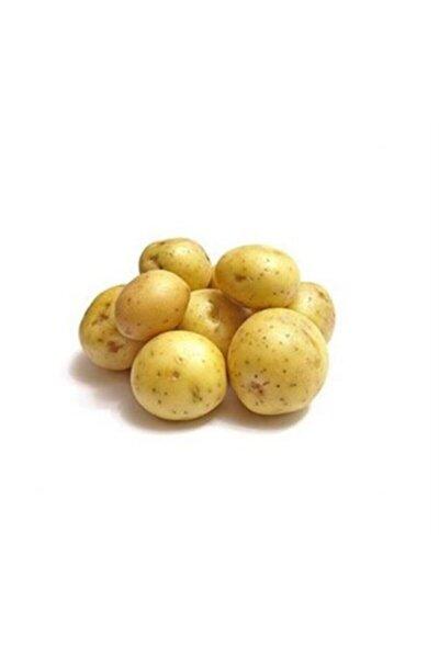 Bebek Patates 500 gr