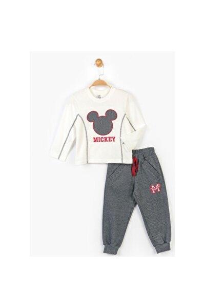 Mickey 2 Li Takım