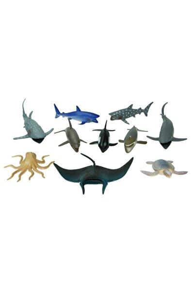 Kutulu 10 Parça Hayvan Seti Okyanus Hayvanları