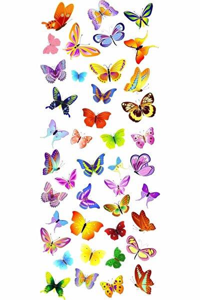 Renkli Kelebekler 50 Farklı Figür Duvar Sticker Seti