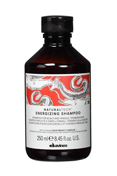 Dökülmeye Karşı Enerji Şampuan 250 ml