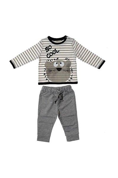 Erkek Bebek Gri Çikoby Ayıcık Desenli Alt Üst Takım
