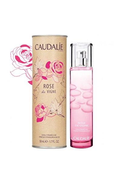 Gül Aromalı - Rose Le Vigne Edp 50 Ml Kadın Parfümü 3522930001836