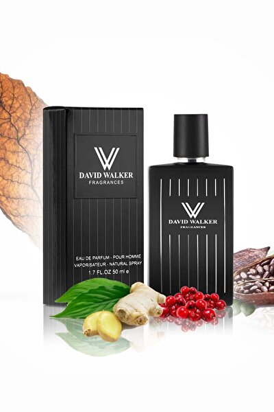 Puro E160 50ml Aromatik&odunsu Erkek Parfüm