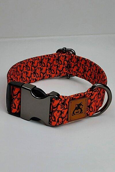 Redd Köpek Boyun Tasması Xlarge