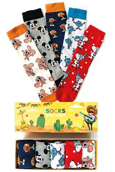 Unisex Beyaz 5'li Gumbol Desenli Çorap Kutusu
