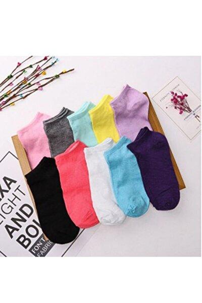 Piraye'm 12'li Renkli Kadın Patik Çorap