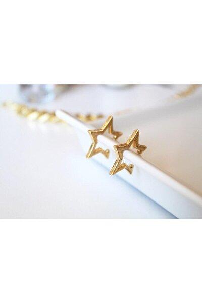 Gold Yıldız Sıkıştırmalı Kıkırdak Küpe [adet]