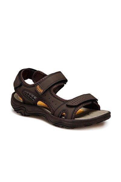 228653 Kahverengi Erkek Sandalet 100497779