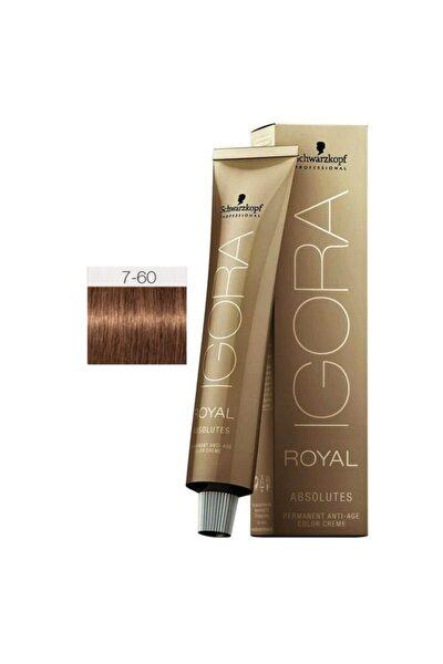 Royal Absolutes 7-60 Kumral-çikolata Doğal