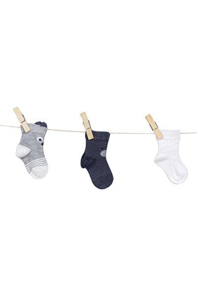 C35560 Erkek Bebek Desenli Dikişsiz 3'lü Çorap